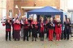 Poppy Appeal events in Ringwood